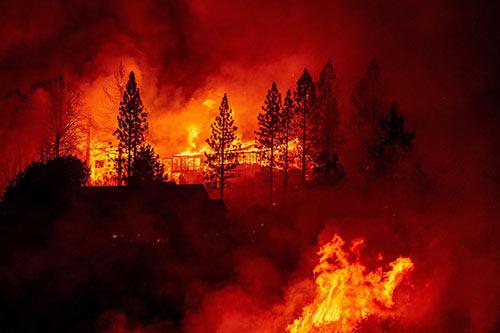 Thảm họa thiên nhiên 2020